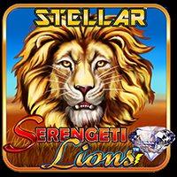 Serengeti Lions Stell Jjkp